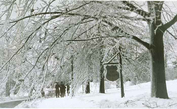 Delta Chi Omega in the snow, undated