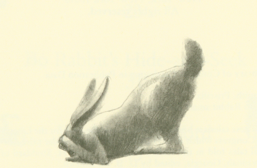 Bo Rabbit Smart for True title page