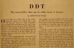 Teale DDT Article Image 1
