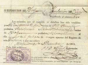 Cazadores de Balmaceda Battalion in the Valeriano Weyler Papers
