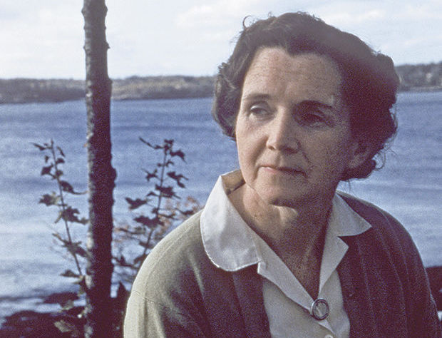 "essay on rachel carson In her essay tides"", rachel carson uses a multitude of facts, to convey the power of tides, and in doing so, she reminded me of a discovery channel."