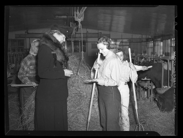 Eleanor Roosevelt in dairy barn checking a trainee's hands for blisters