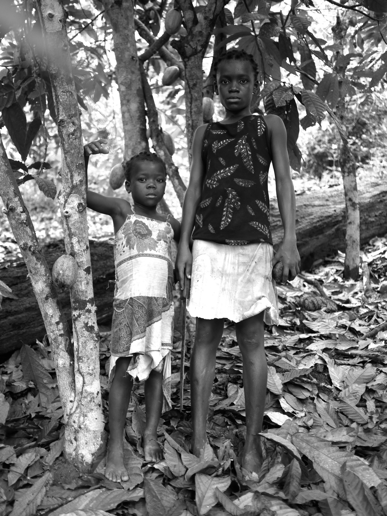 Young Girls At Cocoa Farm (2010)