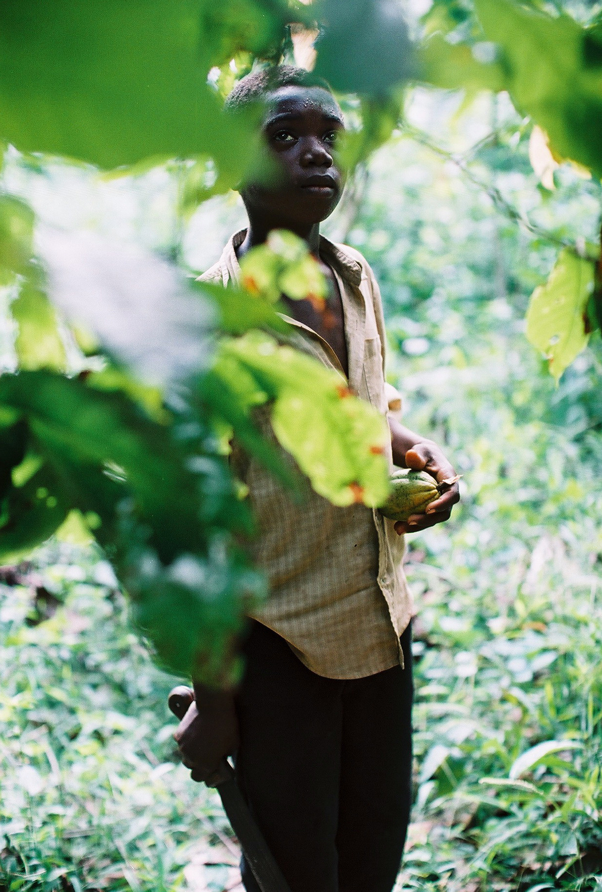 Mousso Ouedrago Holding Machete And Cocoa Pod