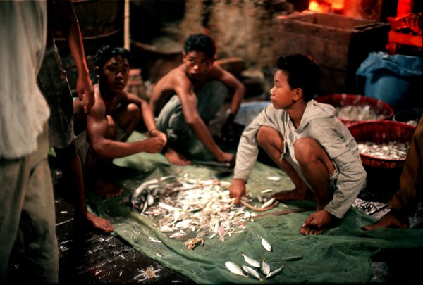 Photograph by U. Roberto (Robin) Romano of children sorting through fish on a fishing platform (jermal) off the coast of northern Sumatra