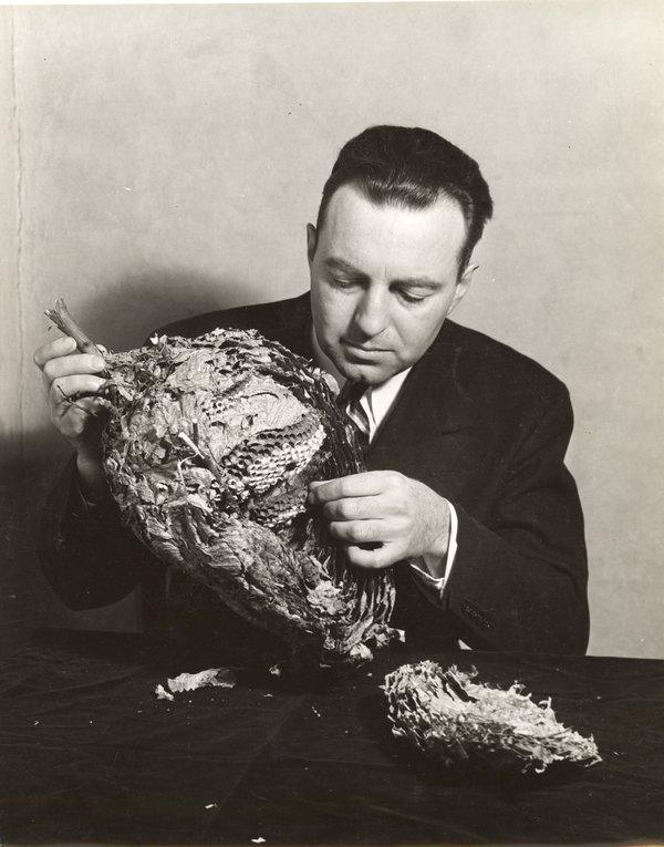 Edwin Way Teale, 1935