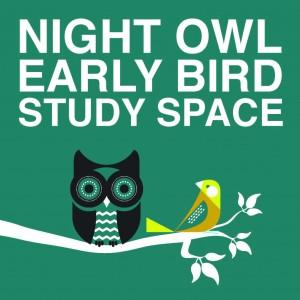 night owl early bird logo