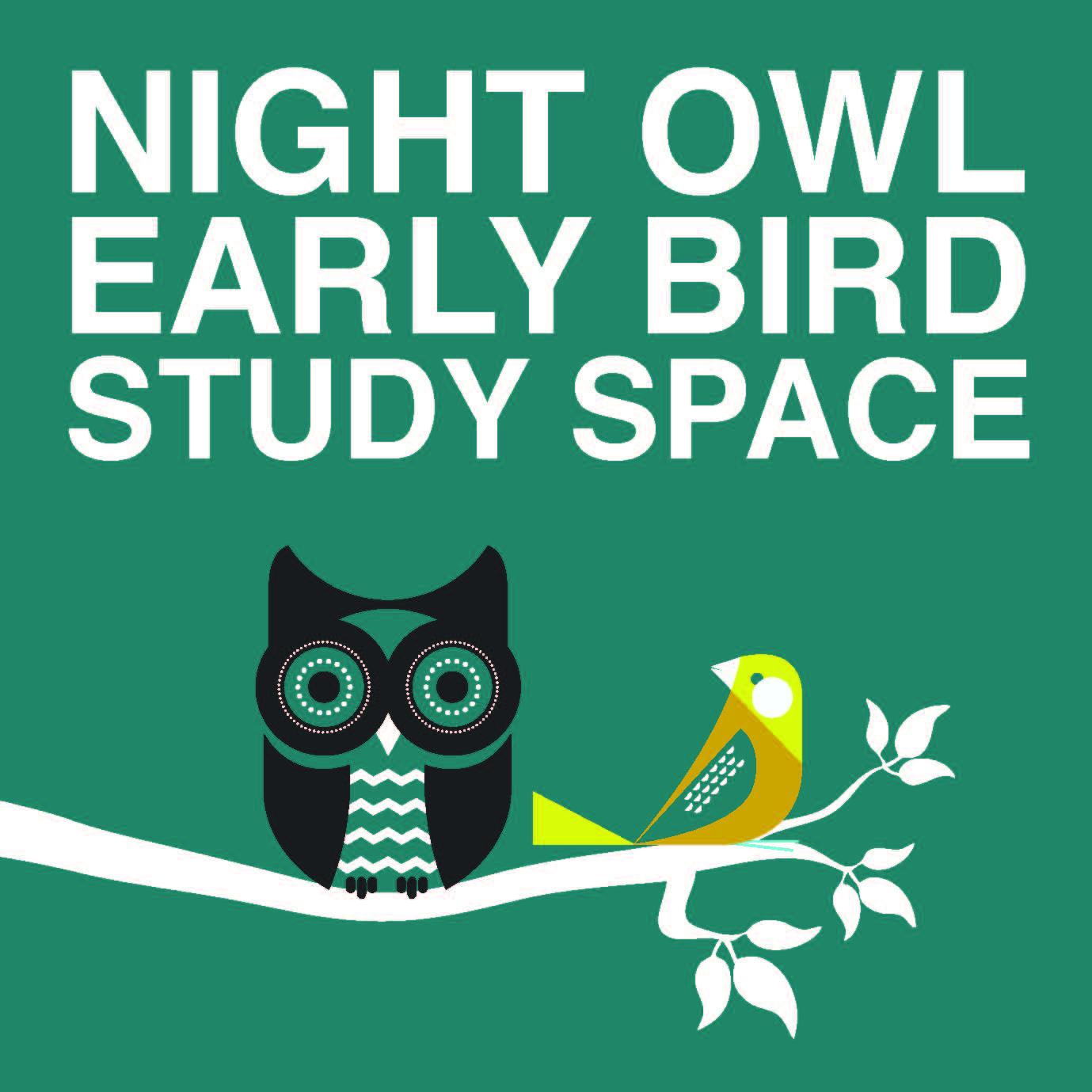 Early bird vs night owl essays